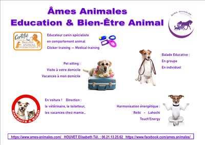 Photo éducateur canin n°267 dans le département 91 par AMES ANIMALES EDUCATION ET BIEN-ETRE