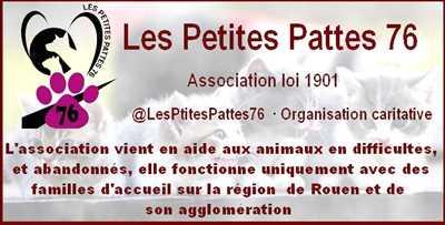 Exemple refuge animaux n°57 zone Seine Maritime par Michel